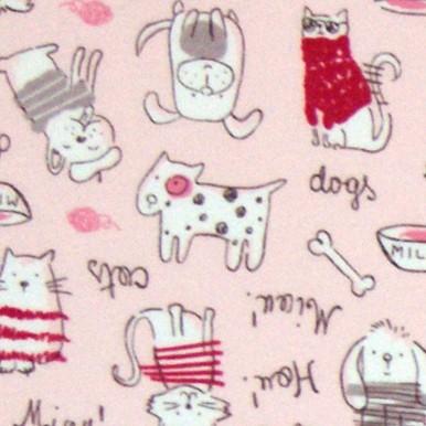 koty i psy róż