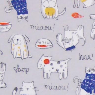 koty i psy szary